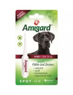 Amigard Spot-on HUND über 30kg Einzelpackung - 6ml