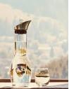 Single Protein Hunde Nassfutter (Getreidefrei)